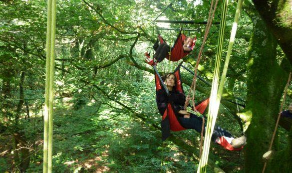 vignette-grimpe-arbre-09